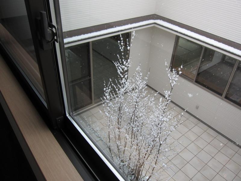 f:id:miwako-yoshida:20110211093227j:image