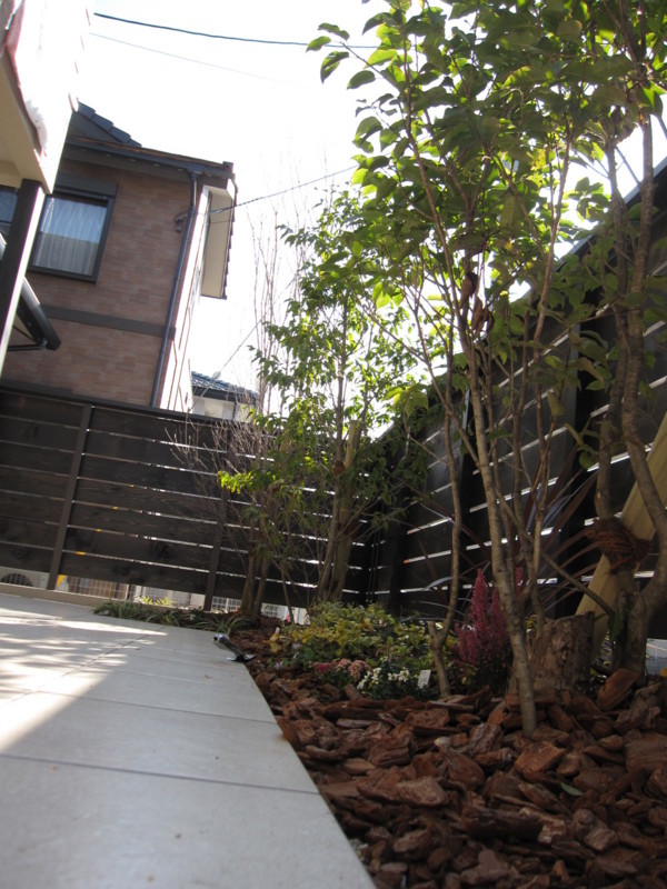 f:id:miwako-yoshida:20110221093157j:image